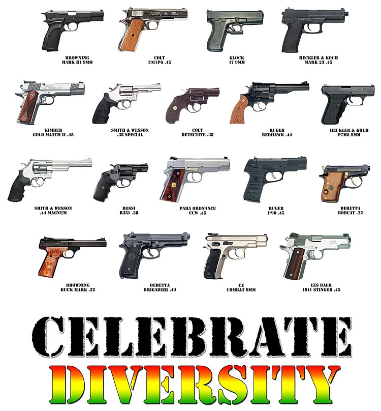 The vast majority of recent mass shooters, including in ...   All Types Of Guns Names And Pictures